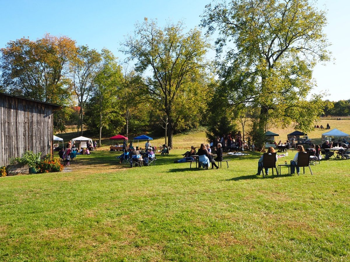 Mountain Run 2016 Fall Festival