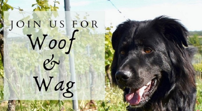 Woof and Wag at the Winery is a chance to bring the dogs out for an event at the vineyard